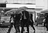 Антициклон принесет в Воронежскую область дожди и похолодание в ближайшие дни