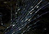 В Воронеже ночью «Мерседес» врезался в препятствие