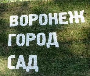 В Воронеже стартовал прием заявок на конкурс «Город-Сад»