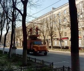 В Воронеже демонтируют остатки троллейбусной сети