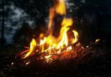 В Воронежской области устанавливается особый противопожарный режим