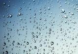 Прохладная погода и дожди ожидают воронежцев на рабочей неделе