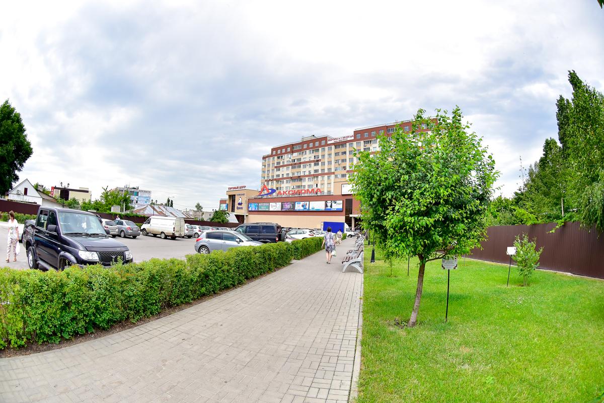 В селе под Воронежем планируют создать комфортную городскую среду