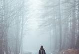 В Воронежской области из-за тумана объявлен желтый уровень погодной опасности