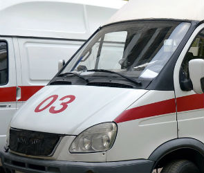 В Воронежской области перевернулась «Лада»: погиб водитель