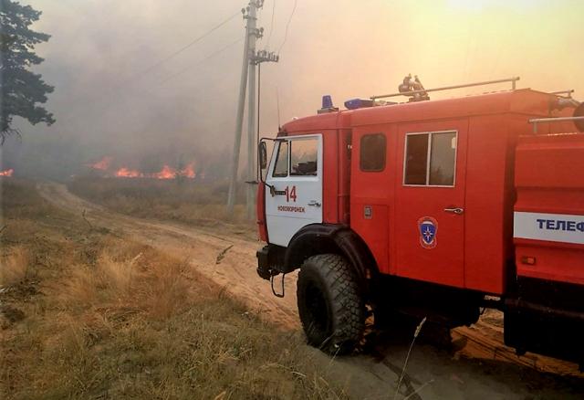 В майские праздники воронежцы устроили три крупных ландшафтных пожара