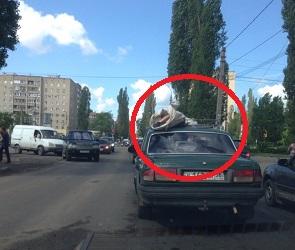 В Воронеже тело покойника перевозили в мешке на крыше «Волги» - фото