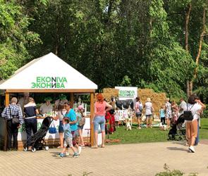 В Воронеже начался грандиозный open-air фестиваль  «Много молока»: ФОТО, ВИДЕО