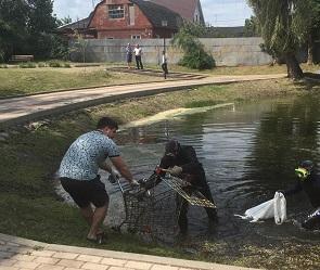 Со дна озера в сквере «Чайка» в Воронеже подняли четыре тележки из супермаркетов
