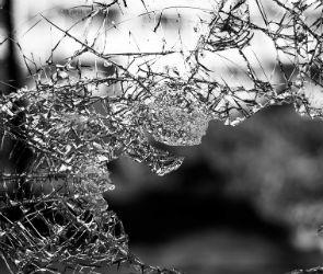 Под Воронежем ГАЗель врезалась в фуру: погибла женщина