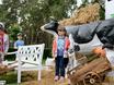 Семейный фестиваль «Много молока» в парке «Алые паруса» 178620