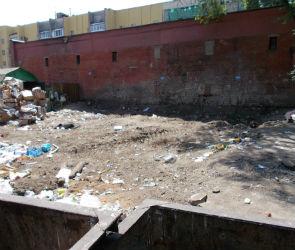 Проблемную контейнерную площадку на улице Маршака вынужден убирать регоператор