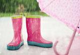 В выходные в Воронеже обещают небольшой дождь