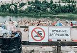 Воронежцев возмутило количество мусора на популярном пляже в Белом колодце