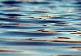 В Воронеже утонули 9-летний мальчик и 16-летний подросток