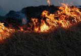 Под Воронежем на военном полигоне Погоново загорелись боеприпасы