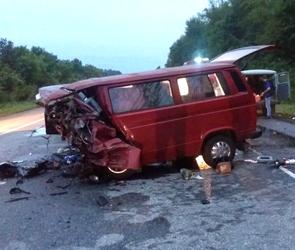 По факту ДТП с восемью погибшими под Воронежем возбуждено уголовное дело