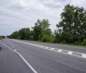 «Сплошную» в 30 км под Воронежем эксперты назвали «кормушкой для сбора штрафов»