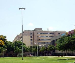 Медицинский центр Шиба – обзор государственной больницы Израиля