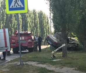 В Воронеже иномарка врезалась в дерево, два человека в реанимации