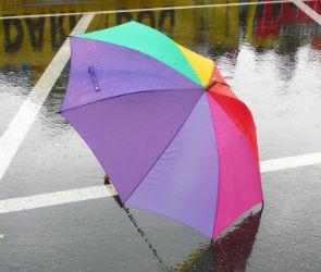 Дождливые и прохладные выходные ожидают воронежцев