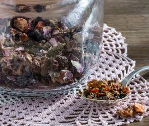 В воронежском санатории детей кормили сухофруктами с насекомыми