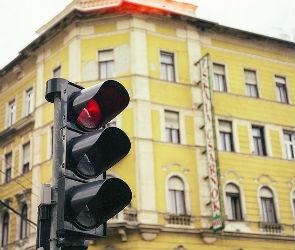 Водителя автобуса №80, проехавшего на красный свет в Воронеже, оштрафовали