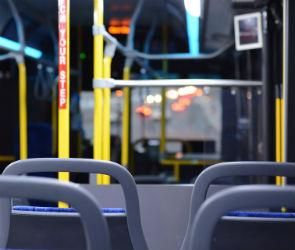 Опрос СМИ: воронежцы готовы к росту цен на проезд в общественном транспорте