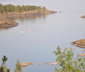 На дне Ладоги воронежские дайверы нашли корабль, затонувший в финскую войну