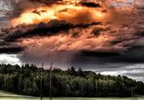 Синоптики предупредили воронежцев о дождях и грозах в начале недели