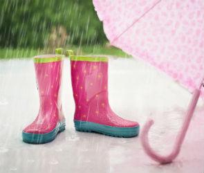 На рабочей неделе воронежцам обещают дожди и повышение температуры