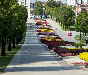 В Воронеже на благоустройство 9 скверов и бульваров потратят 14 млн рублей