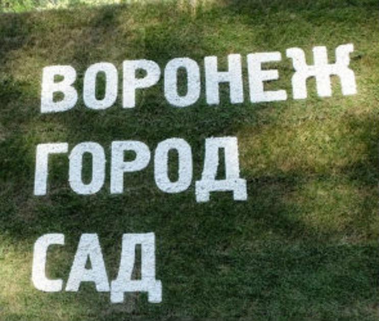 На фестиваль «Город-Сад» в 2019 году потратят почти 26 млн рублей