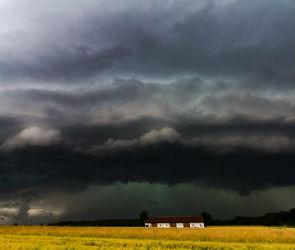 В Воронеже объявили штормовое предупреждение из-за грозы, ветра и града