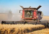 В Воронежской области собрали второй миллион тонн зерна