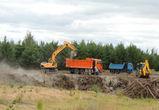 «ВИТ-СТРОЙ» ликвидировала свалку в лесу  села Ямное