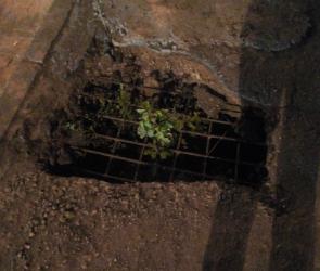 Дыры в пешеходной части виадука на 9 Января вызвали недовольство у воронежцев