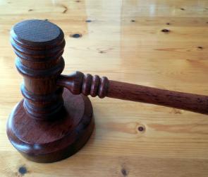 В Воронеже вынесен приговор по зверскому убийству 72-летней пенсионерки