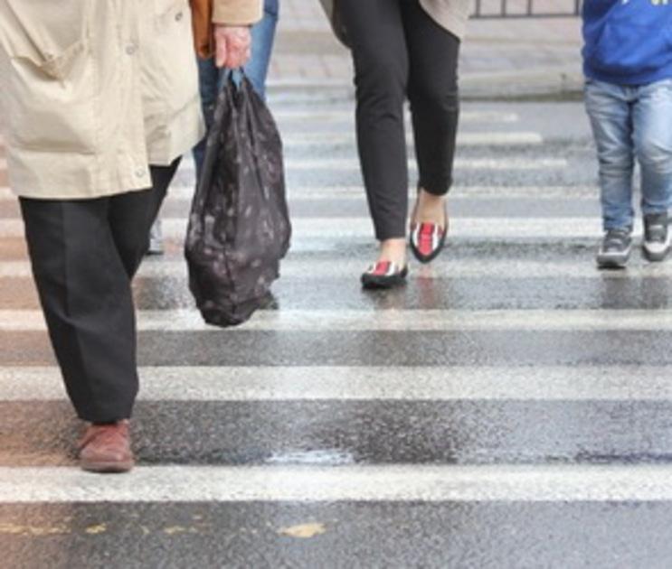 В Воронеже ввели мораторий на ликвидацию пешеходных переходов