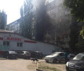 Пожар в «Магните» на левом берегу Воронежа попал на видео