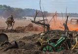 Воронежцы увидят реконструкцию «Атаки мертвецов»