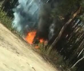 Полыхающий в Северном лесу автомобиль попал на видео
