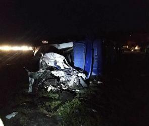 По факту аварии с четырьмя погибшими под Воронежем возбудили уголовное дело