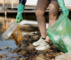 Активисты «Greenpeace» зовут воронежцев на уборку местного водохранилища