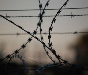 Новосибирскому бизнесмену грозит 5 лет тюрьмы за мошенничество в Воронеже