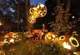 В Воронеже девятый «Город-сад» посетили 308 тысяч человек