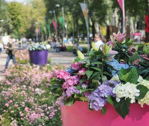 IX международный фестиваль «Город-Сад» с успехом прошел в Воронеже
