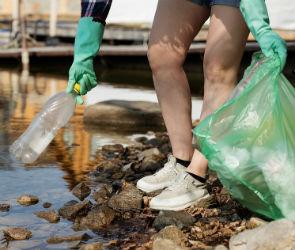Воронежцев приглашают присоединиться ко всемирному дню чистоты