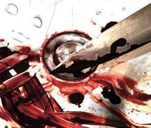 В Воронежской области под суд пойдет мужчина, зарезавший приятеля кухонным ножом