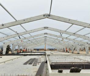 В Воробьевском районе откроется селекционный центр по свиноводству